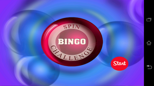 Bingo Spin Challenge
