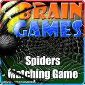 Spiders Matching Game