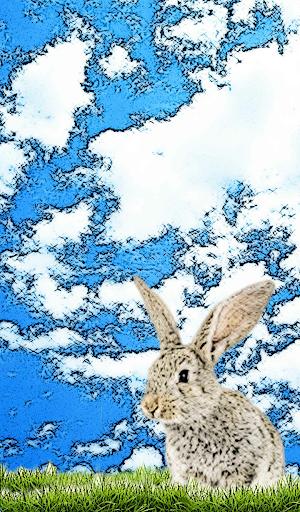 Easter Bunny Calls