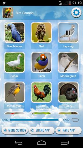 無料音乐Appの鳥の音|HotApp4Game