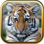 Free Baby Animal Puzzles