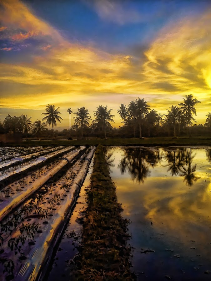 Refleksi Sore by Randi Pratama M - Instagram & Mobile Android ( clouds, water, reflection, afternoon, indonesia,  )