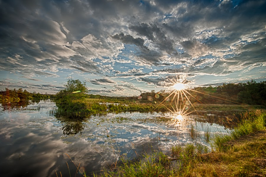 Sunset in Necedah by Molly Beale - Landscapes Sunsets & Sunrises ( wisconsin, sunset, necedah, wildlife, landscape,  )