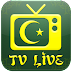 Arabe TV en Direct