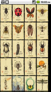 Tarot of Bugs- screenshot thumbnail