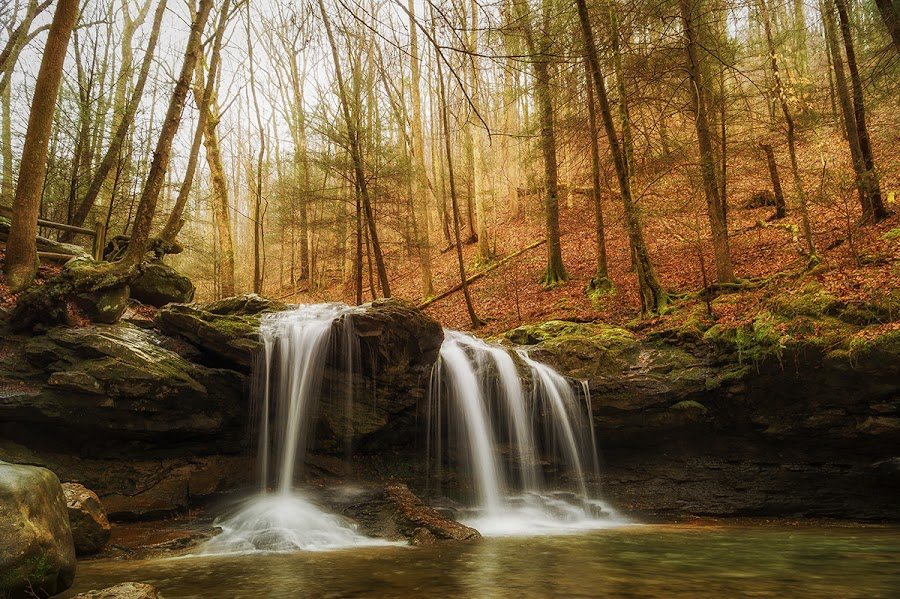 Debord Falls by Trent Eades - Landscapes Waterscapes ( water, stream, mountains, waterfall, debord falls, river, frozen head )