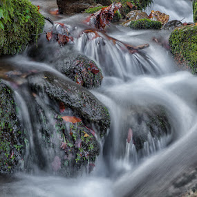 Šoštar's stream by Andrej Topolovec - Landscapes Waterscapes ( water, watersc )