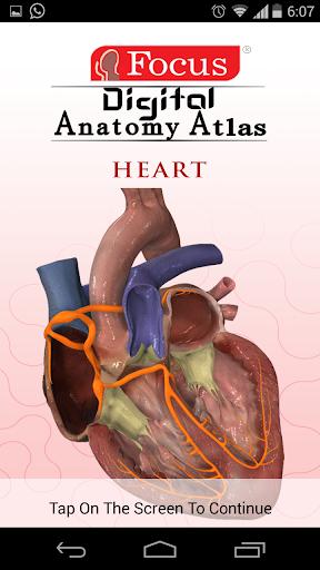 HEART - Digital Anatomy Atlas