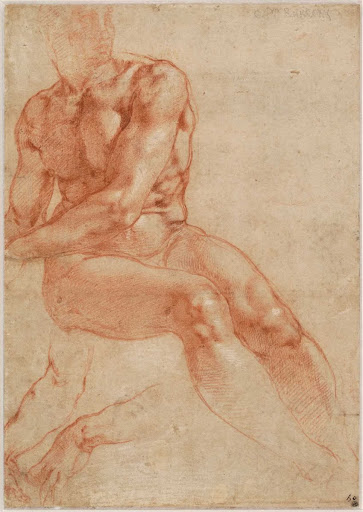 Seated Young Male Nude and Two Arm Studies (recto), c. 1510-11