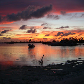 Anegada by Terry Niec - Landscapes Sunsets & Sunrises ( color, sunset, anegada, setting point,  )