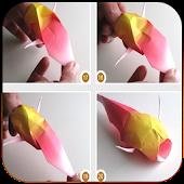 Origami Master Class