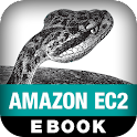 Programming Amazon EC2 logo