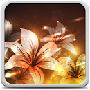 Glowing Flowers Live Wallpaper file APK Free for PC, smart TV Download