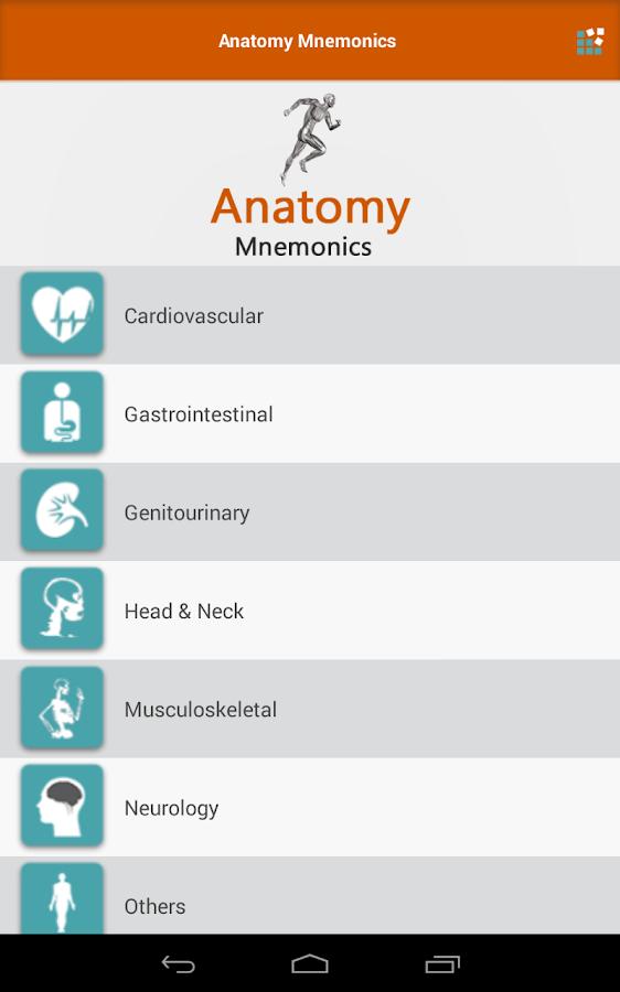 Fine Head And Neck Anatomy Mnemonics Photo - Human Anatomy Images ...