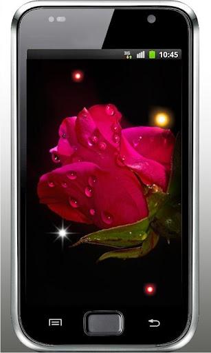 Drops n Roses live wallpaper