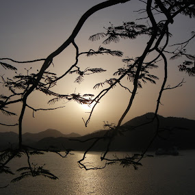 shining in the setting sun by Vikas Jorwal - Landscapes Sunsets & Sunrises ( water, hills, dawn, waterscape, rajasthan, silhouette, sunset, udaipur, fatehsagar, lake, landscape,  )