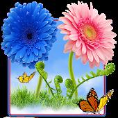 Sky Flowers HD Free