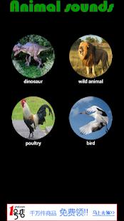 有趣的動物聲音