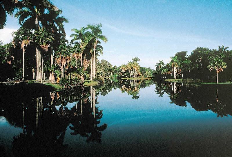 Fairchild Tropical Botanical Garden in Miami.