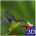Flying Birds 3D icon