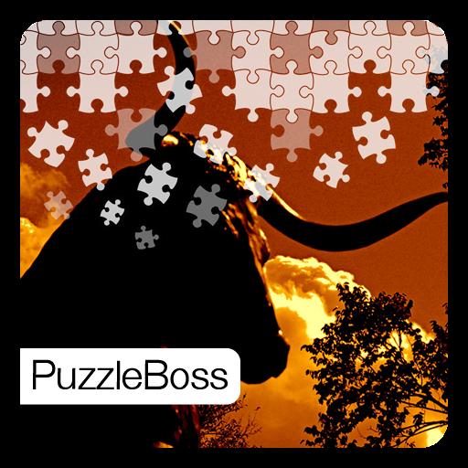 Dallas Jigsaw Puzzles 解謎 App LOGO-APP試玩