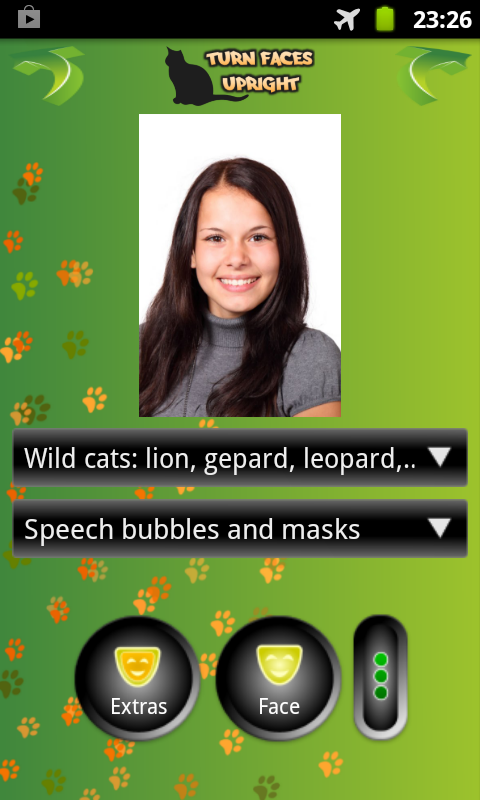 Look Like Cat or Wild Cat - screenshot