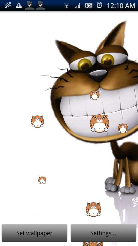 Funny Cat Live Wallpaper Pro - screenshot