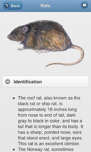 Steritech Pest ID