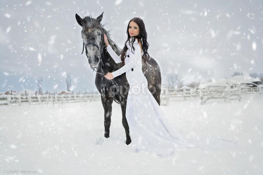 Winter by Catalin-Adrian Neacsu - People Portraits of Women ( girl, winter, horse, white dress, blizzard, snowing )
