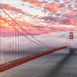 Evening Commute by David Gordon - Buildings & Architecture Bridges & Suspended Structures ( photograph, golden gate bridge, cali, purple, california, pacific, west coast, san fran, travel, cityscape, seascape, landscape, city, urban, fog photography, fog, nor cal, sunset, weather, pink, bridge, san francisco )