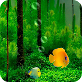 Fish Tank 3D Live Wallpaper