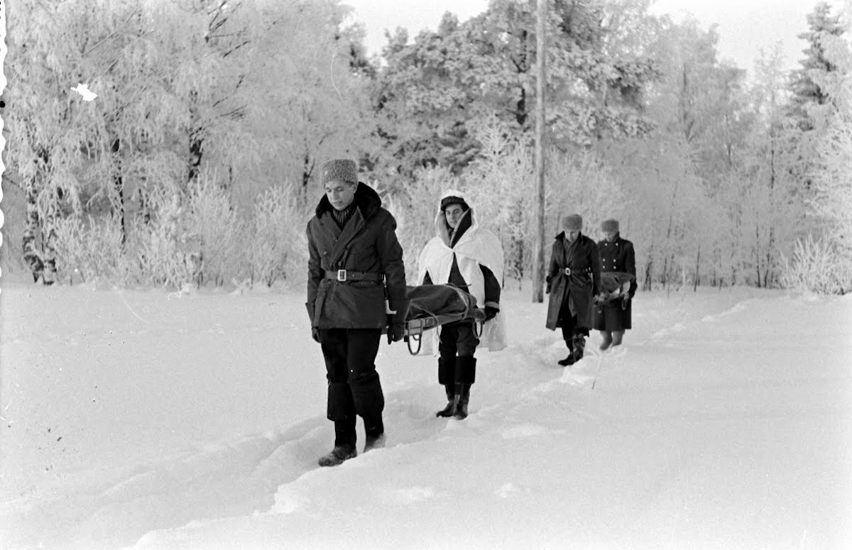 Finnish Army In The South