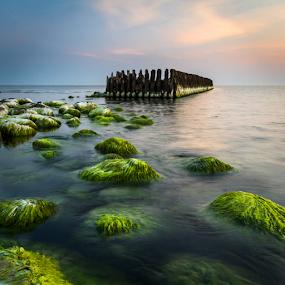 *** by Eriks Zilbalodis - Landscapes Sunsets & Sunrises ( mole, sunset, green, sea, seascape, landscapes, stones, baltcsea )
