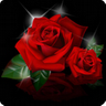 Flower Of Love Wallpaper icon