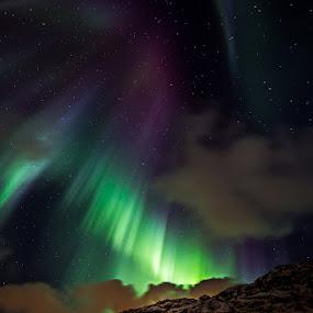 Northern Lights by Ennio Pozzetti - Landscapes Starscapes ( night photography, aurora borealis, northern lights, night, trip, lofoten, norway,  )