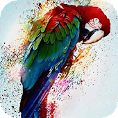 Multicolored parrot LWP