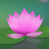 Learn to Meditate 5 Wk Course