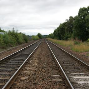 Railway Tracks by Robin Watson - Transportation Railway Tracks ( railway tracks, trains, simplistic )