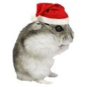 Christmas Hamster Sticker icon