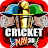 Cricket Play 3D: Live The Game logo