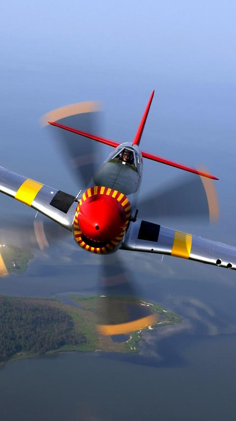 ● Warbirds: P-51 Mustang FREE - screenshot