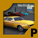 3D Duty Terrace parking game icon