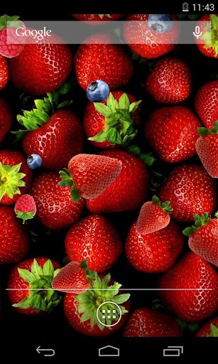 딸기 라이브 배경