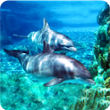Magic Effect: Dolphins icon