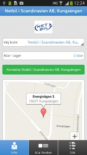Netbil i Scandinavien