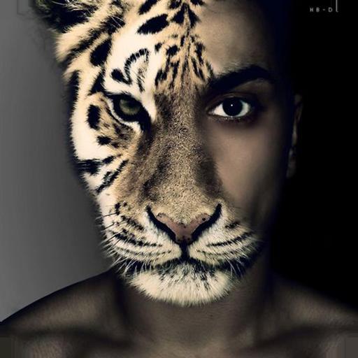 個人化App instaface:动物相机 LOGO-3C達人阿輝的APP