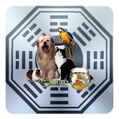 M855 Pet Horoscope