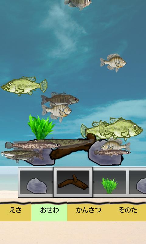 Blackbass Breeding (Aquarium) - screenshot