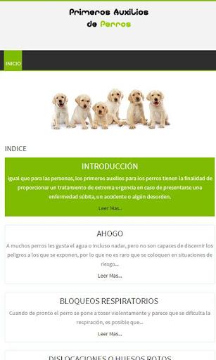 Perros Primeros auxilios