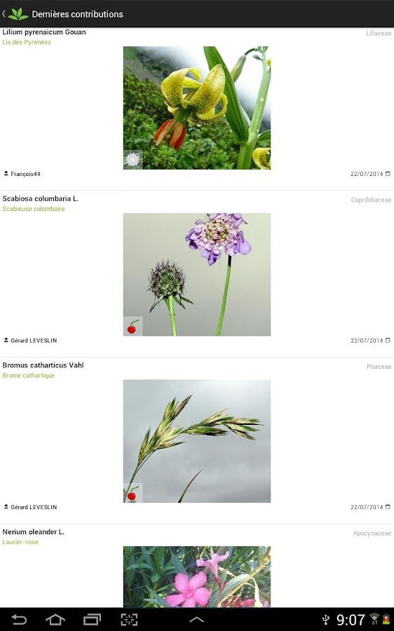 PlantNet Identification Plante - screenshot